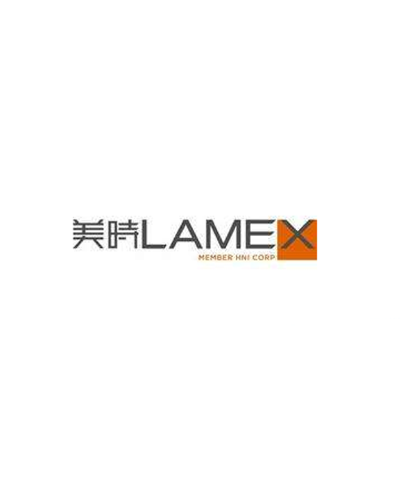 Lamex use case